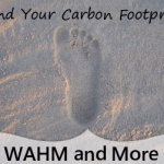 carbon footprint